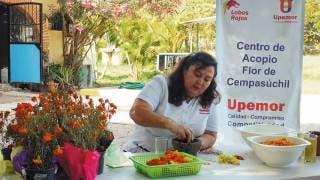 Abre Upemor centro de acopio de flor de cempasúchil 2