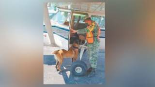 Colocan filtros sanitarios en aeropuerto de Morelos contra COVID-19 2