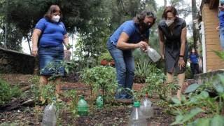Esto se hizo en Cuernavaca en 2021 para proteger a la naturaleza 2