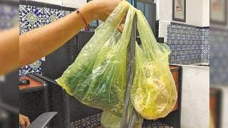 Se une el TUJA a ley antiplásticos de Morelos 2