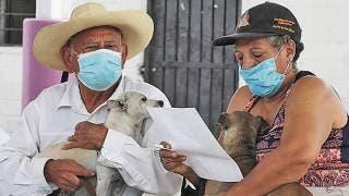 Aplican vacuna antirrábica en Coatlán del Río 2