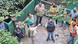 Avanzan arreglos al Paseo Ribereño en barranca de Amanalco, Cuernavaca 2