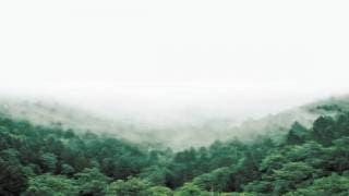 El bosque de los lamentos 2