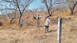 Realizan colectivos trabajos de búsqueda en Xochitepec 2