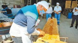Convocan a productores agropecuarios para exponer en el Miquixtli 2021 2