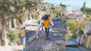 En enero en Morelos, en vigor Ley para prevenir dengue 2