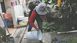 Alcanzan casos de dengue en Morelos primer lugar nacional 2