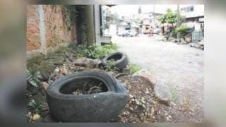 Refuerzan medidas para evitar propagación de dengue 2