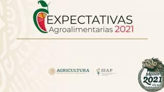 Destacan expertos productividad y resiliencia de la agricultura mexicana ante la etapa de emergencia sanitaria 2