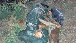 Hallan a un hombre sin vida en Xochitepec 2