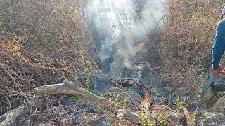 En lo que va del año, 138 incendios en Morelos 2