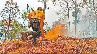 Es Morelos octavo sitio en incendios a nivel nacional 2