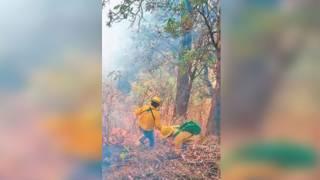 Morelos, entre los 10 estados con más incendios forestales 2