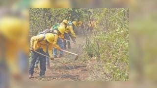 Alertan por capa de humo tras incendios en Morelos 2