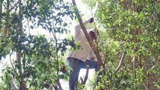 Ponen al día las escuelas en Morelos 2