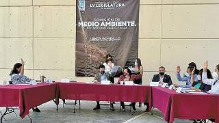 Suman en Morelos por el medio ambiente 2