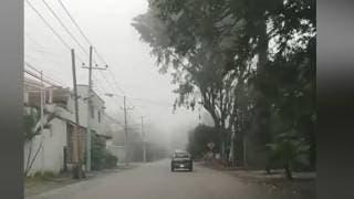 Así luce avenida Palmira, con neblina #...