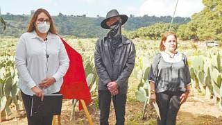 Dedican billete de lotería a nopal de Morelos 2