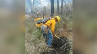 Sofocan 13 incendios forestales en una semana en Tepoztlán, Huitzilac y Yautepec 2