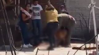 Familia asesinó a golpes a perro en Edomex; los llaman a declarar al MP 2