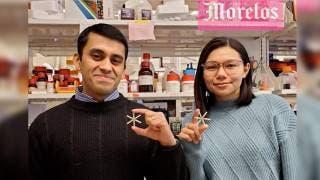 Crean píldora anticonceptiva que solo se...