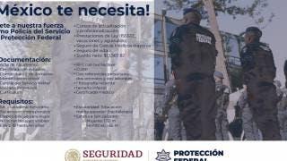 ¿Buscas trabajo? El Servicio de Protección Federal te pagará hasta 13 mil pesos 2