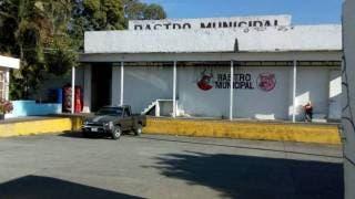 Opera el rastro de Cuernavaca sin dificultades 2
