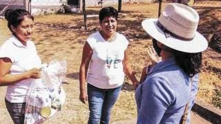 Piden a visitantes que llegan a Tlayacapan aislarse 15 días en el municipio 2