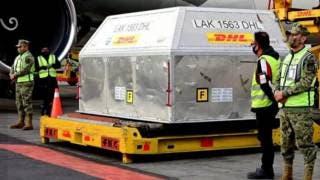 Llega nuevo cargamento con más de 500 mil vacunas de Pf...
