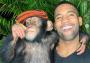 Mono con celular usa Instagram