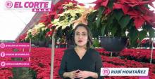 LA INFORMACIÓN MÁS IMPORTANTE DEL ESTADO DE MORELOS 24 DE NOVIEMBRE 2020