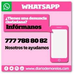 WhatsApp Rosa - Denuncias